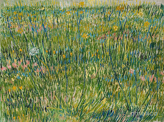 Patch of Grass Print by Vincent van Gogh