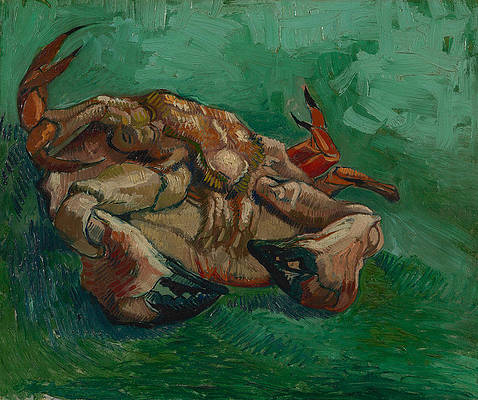 A crab on its back Print by Vincent van Gogh
