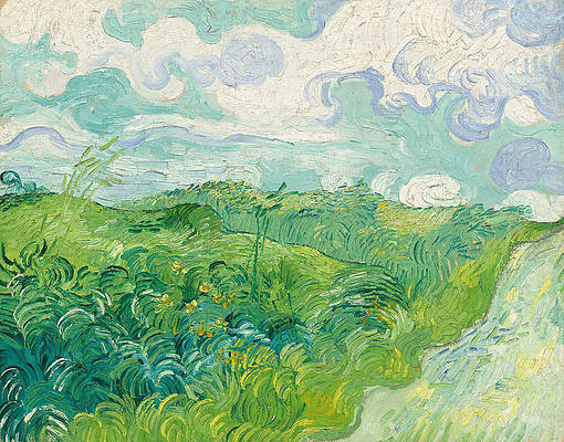 Green Wheat Fields. Auvers Print by Vincent van Gogh