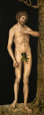 Adam Print by Lucas Cranach the Elder