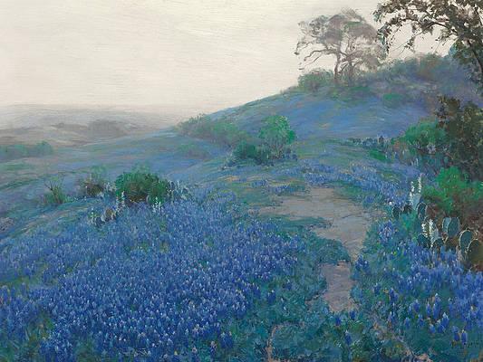 Blue Bonnet Field. Early Morning. San Antonio Texas Print by Julian Onderdonk