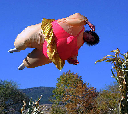 Photograph - Flying Fat Lady by Day Williams