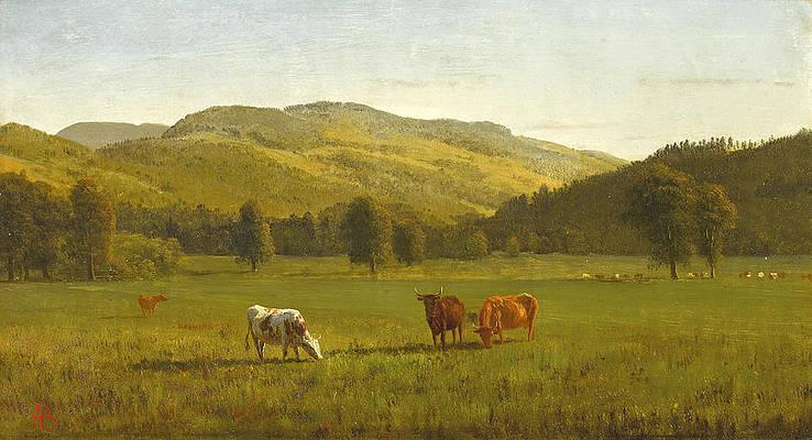 Pemigewasset River. New Hampshire Print by Albert Bierstadt