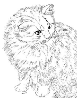Persian Cat Drawings Fine Art America