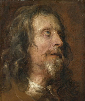 Portrait Study of a Bearded Man Print by Anthony van Dyck