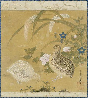 Реалистичный цветочный рисунок - Перепела, сверчки, просо и цветы работы Тоса Мицуоки
