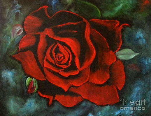 Red Rose by Jenny Lee
