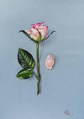 Реалистичный рисунок цветка - оттенки розового от Елены Колотуши