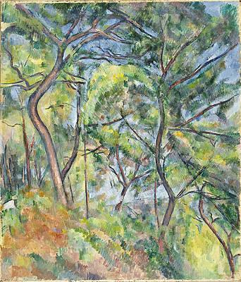 Sous-Bois Print by Paul Cezanne