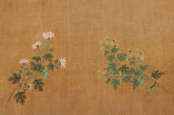 Реалистичный цветочный рисунок - Десять хризантем 1 работы Чжао Мэнфу