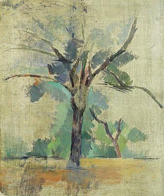 Trees Print by Paul Cezanne