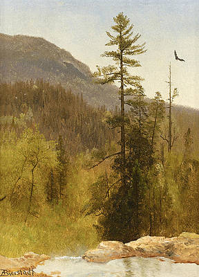 White Mountains New Hampshire Print by Albert Bierstadt