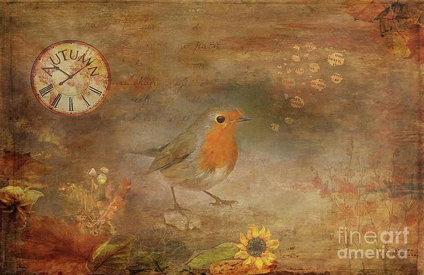 Original Artwork Robin Redbreast Mixed Media Unique piece Of Art From Isle Of Skye Artist