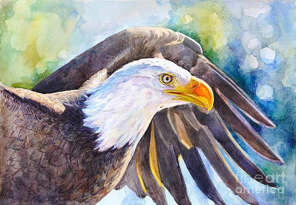 Fine Art Bald Eagle