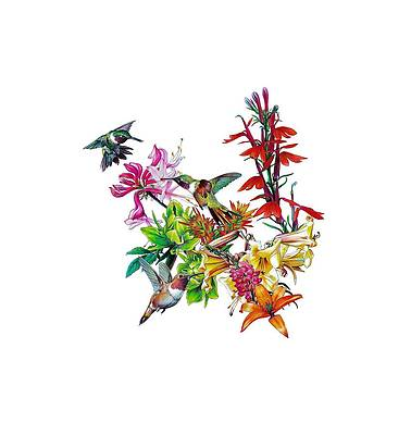 Realistic Flower Drawing - Hummingbird Flowers by Salmoneggs