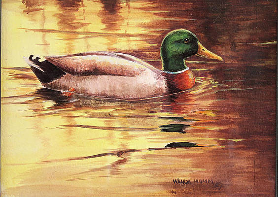 Zip Up Hoodie Ducks Mallard Wood in The Lake Painted Look