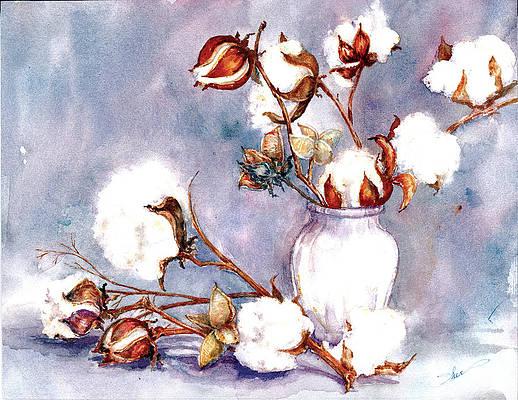 Cotton Boll Art Fine Art America