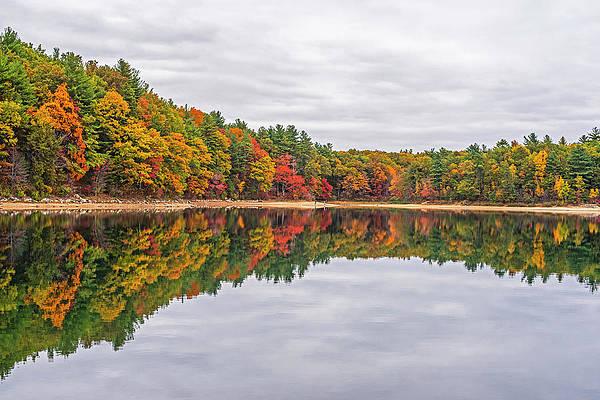 Art print POSTER Shimmering Walden Pond