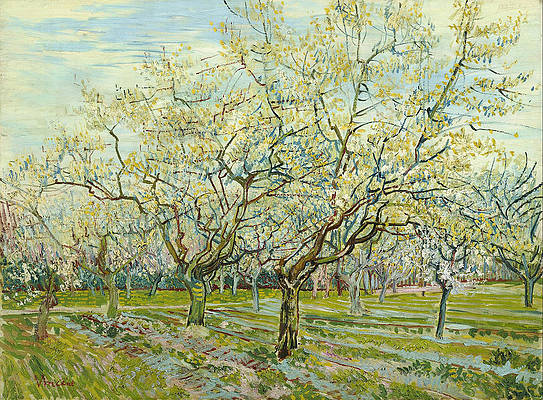 The White Orchard Print by Vincent van Gogh