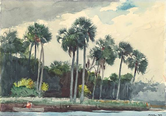 Red Shirt, Homosassa, Florida Print by Winslow Homer