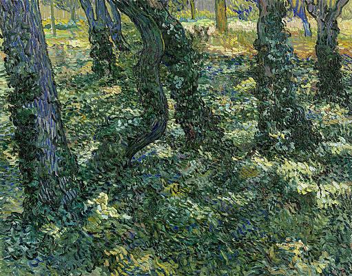 Undergrowth Print by Vincent van Gogh