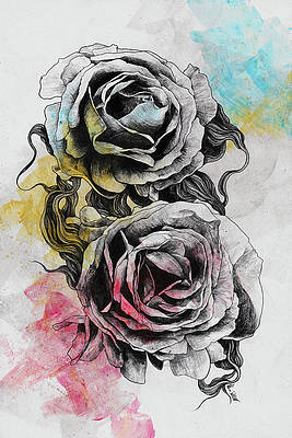 Реалистичный рисунок цветка - Цветочная серия - Rosa Chinensis - реалистичный рисунок роз от Марко Палуде