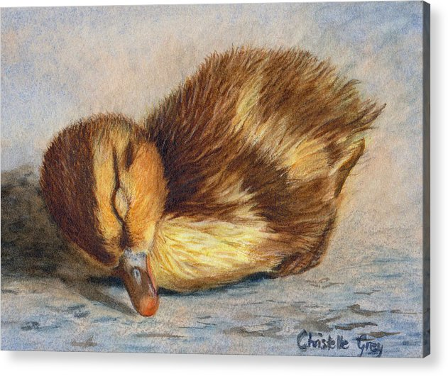 Duckling Acrylic Print featuring the painting Time For A Nap by Christelle Grey