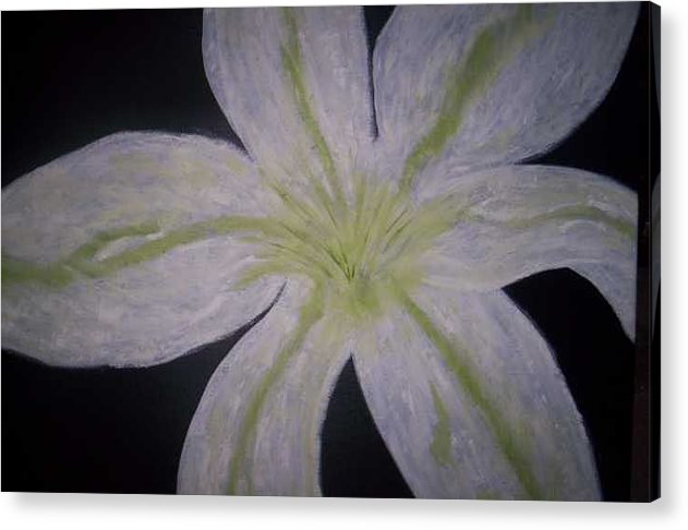 Black Acrylic Print featuring the painting White Lilly by Becca Haney