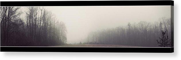 Panorama Acrylic Print featuring the photograph Misty Winter by Kristina Savasta