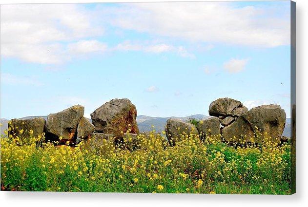 Rock Acrylic Print featuring the photograph Skyrock by Liliana Navarra
