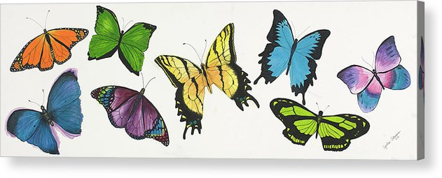 Butterflies Acrylic Print featuring the painting 8 Butterflies by Cynthia Schumann