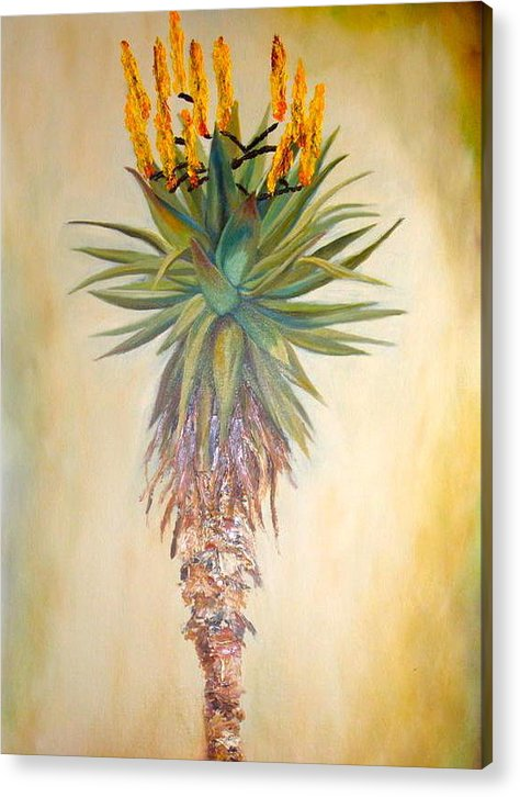 Aloe Acrylic Print featuring the painting Aloe In The Sunlight by Sunel De Lange