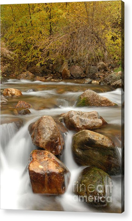Utah Acrylic Print featuring the photograph Autumn In Provo Canyon by Dennis Hammer