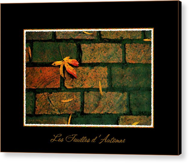 Autumn Acrylic Print featuring the photograph Autumn Leaves by Clyde Nordan