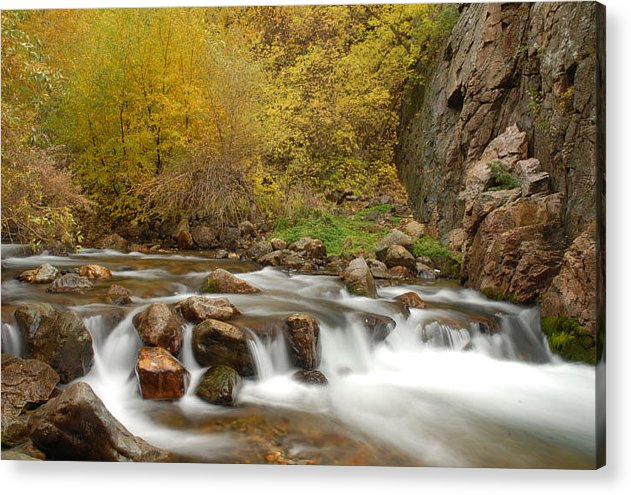 Provo River Acrylic Print featuring the photograph Autumn On The Provo River by Dennis Hammer