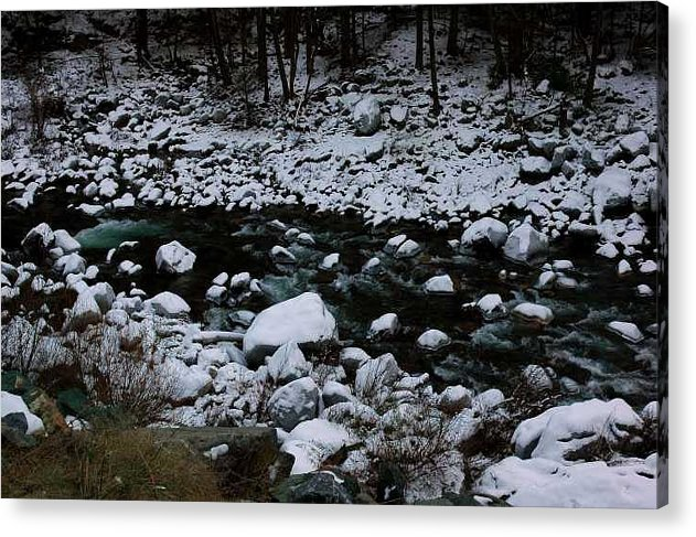 Snow Acrylic Print featuring the photograph Beauty by Rebecca Knoblauch