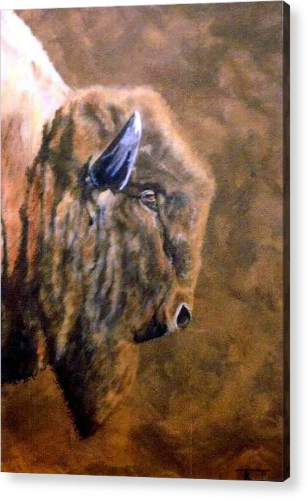Bison Acrylic Print featuring the painting Buffalo by Travis Kelley
