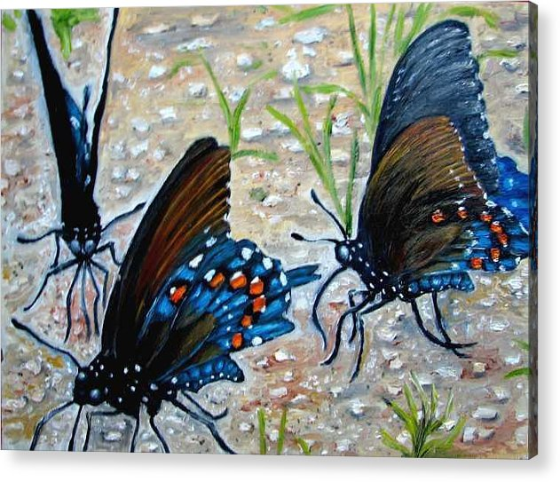 Butterfly Acrylic Print featuring the painting Butterflies Original Oil Painting by Natalja Picugina