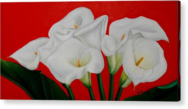 Flowers Acrylic Print featuring the painting Calla Lillys by Elsa Gallegos
