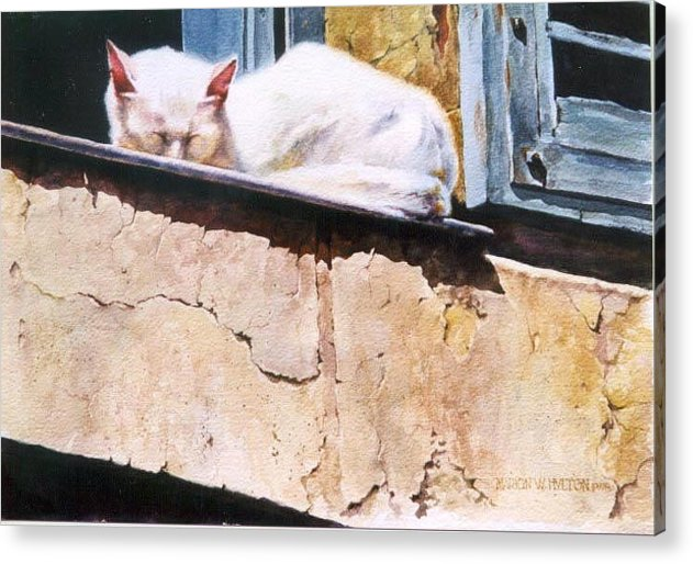 Cat Acrylic Print featuring the painting Catnap by Marion Hylton
