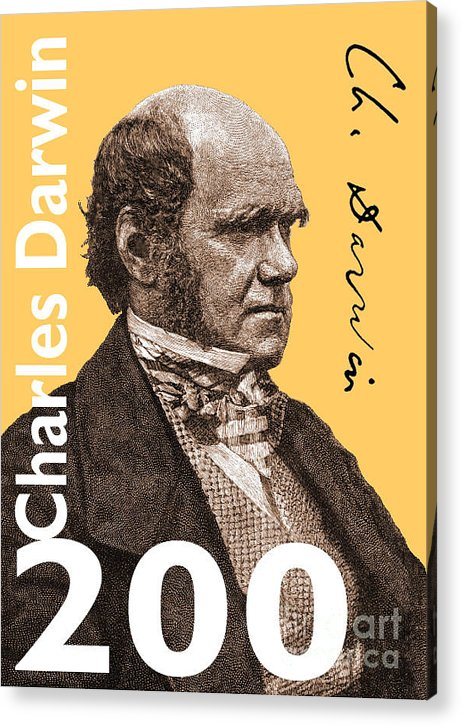 Charles Darwin Acrylic Print featuring the digital art Charles Darwin 200 Yellow by Steve Wyburn