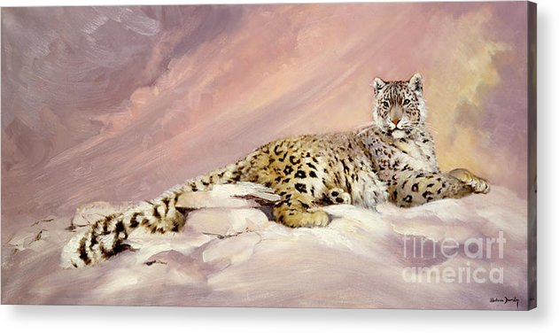 Snow Leopard Acrylic Print featuring the painting Elegance by Silvia Duran
