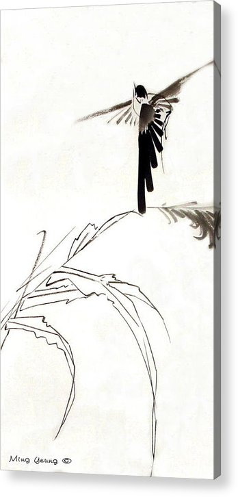 Chinese Painting Acrylic Print featuring the painting Flying High by Ming Yeung