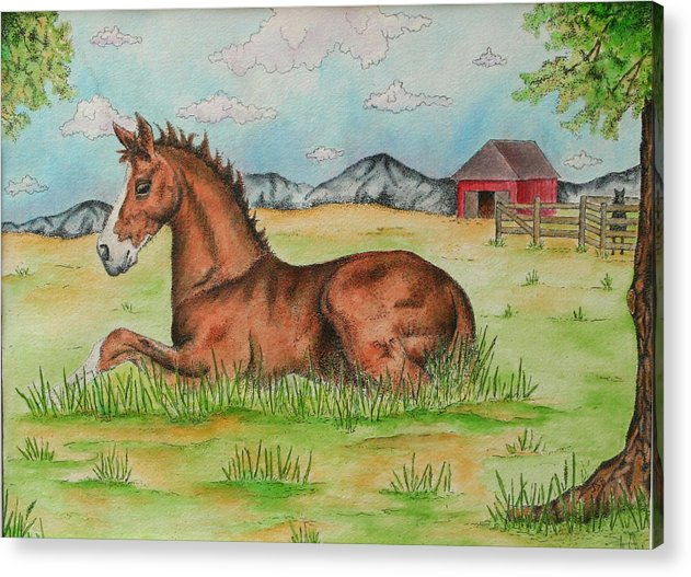 Horse Acrylic Print featuring the painting Foal In Grass by Jodi Bauter