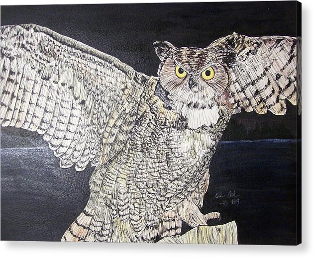 Pen And Ink Acrylic Print featuring the drawing In The Headlights by Olivia Hoppe