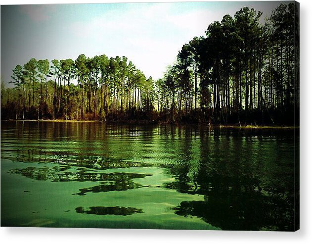 Lure Acrylic Print featuring the photograph Lake Murray Trees by Janele Wilson
