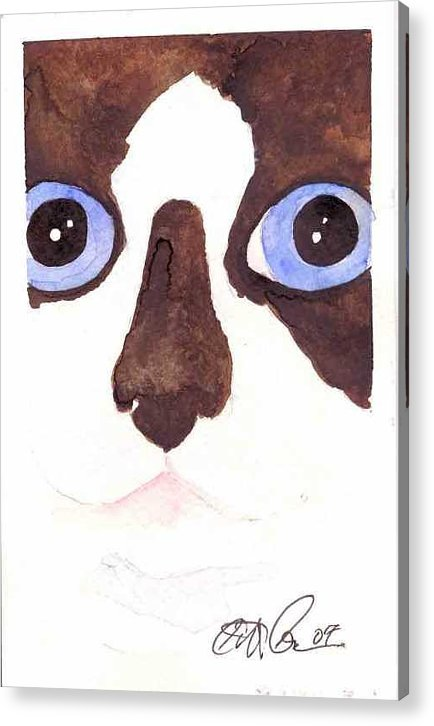 Cat Acrylic Print featuring the painting Large Eyed Cat Oswoa by Christine Callahan