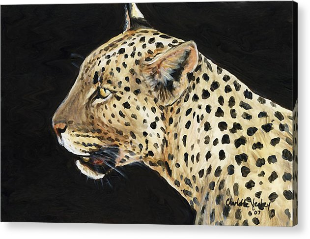 Leopard Acrylic Print featuring the painting Leopard by Charlotte Yealey