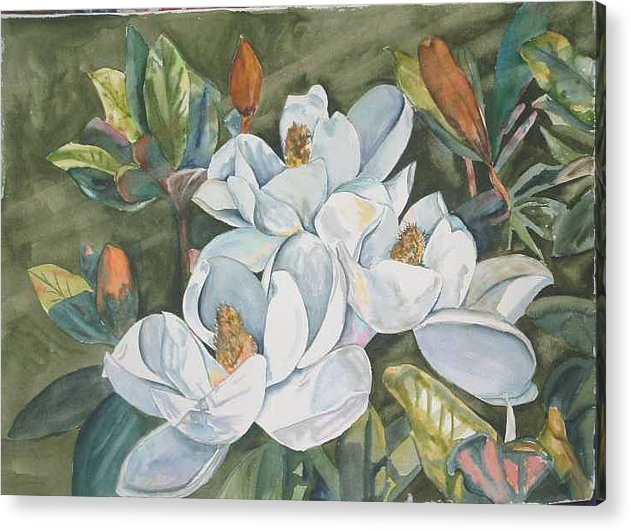 Watrercolor Acrylic Print featuring the painting Magnolias Five by Diane Ziemski