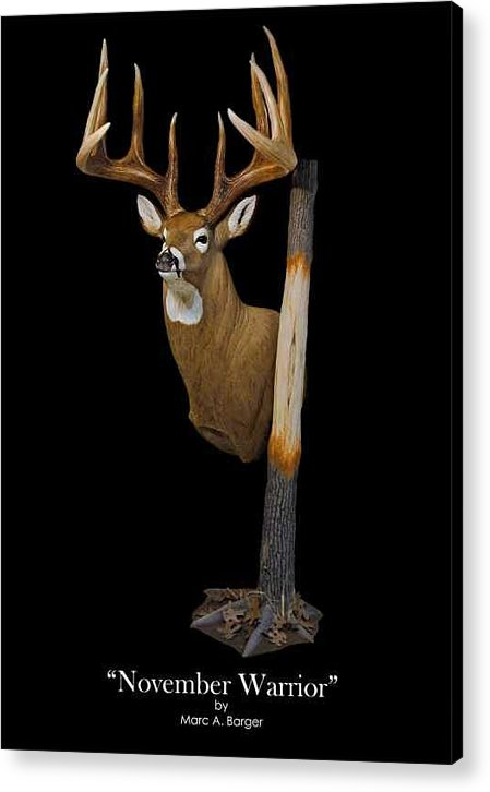 Whitetail Acrylic Print featuring the sculpture November Warrior by Marc Barger